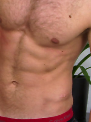 Sebastian shows his hairy chest and cock